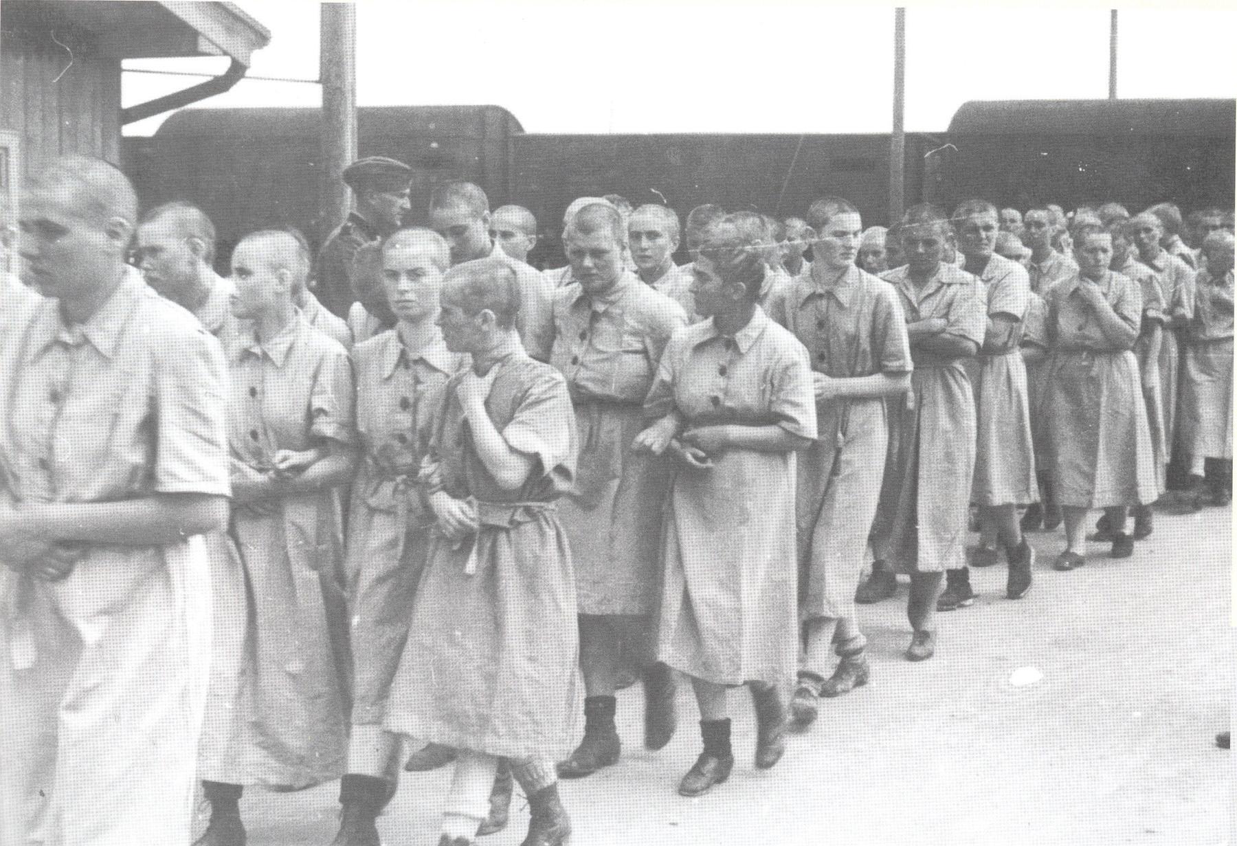 Сексуальные пытки нацистов 9 фотография